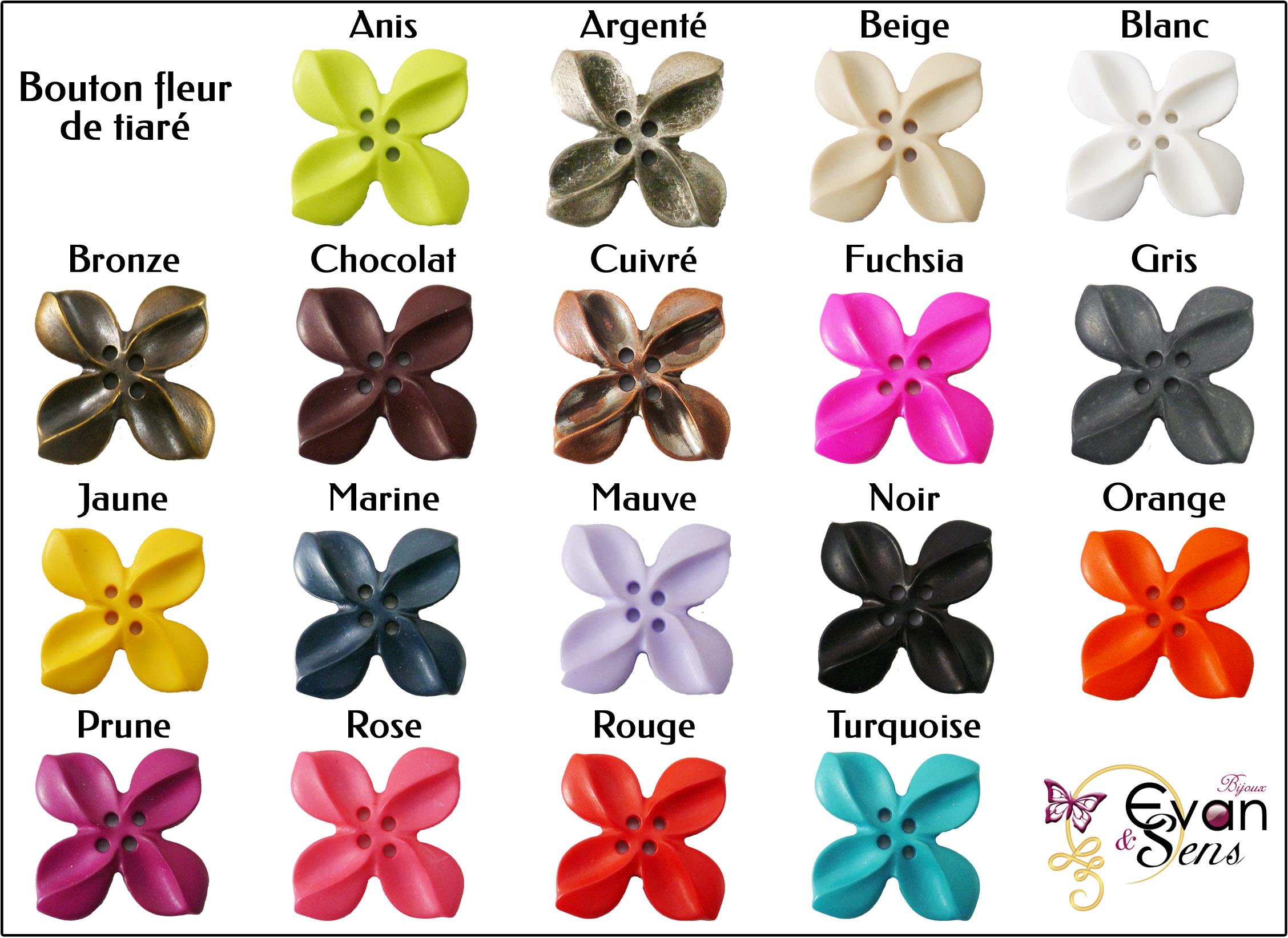 Plaquette de couleurs bouton fleur de tiaré
